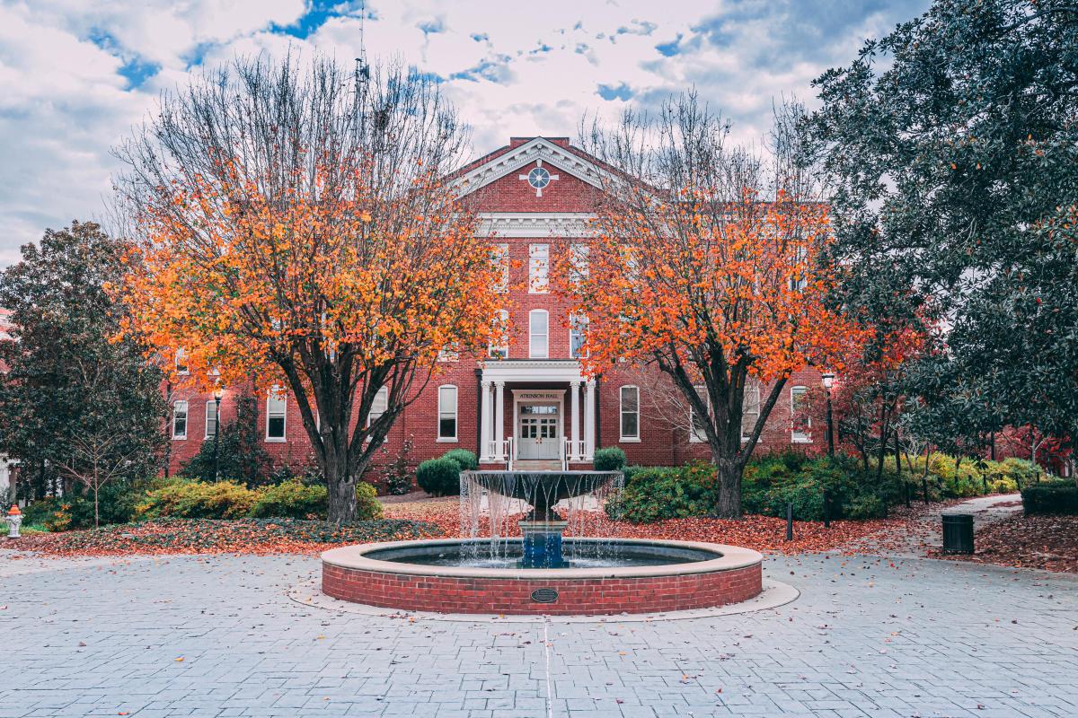 Georgia College fall