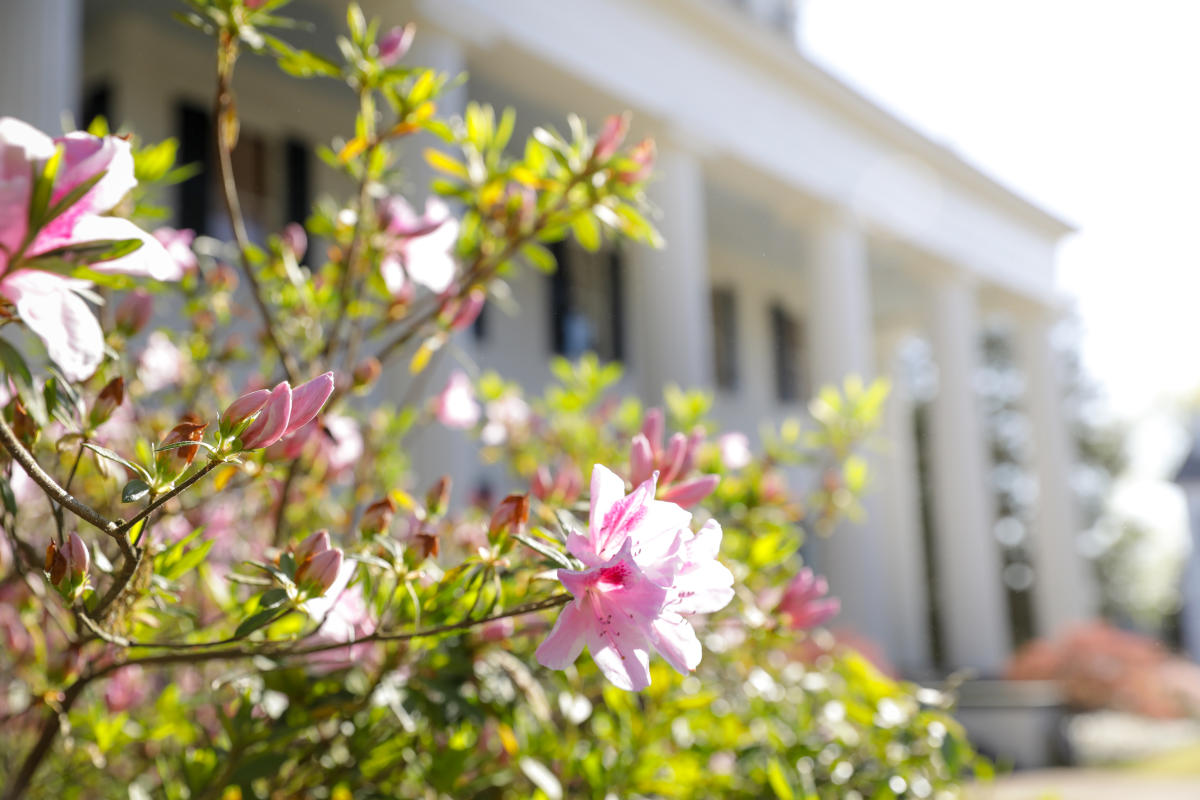 Spring flowers at an historic home