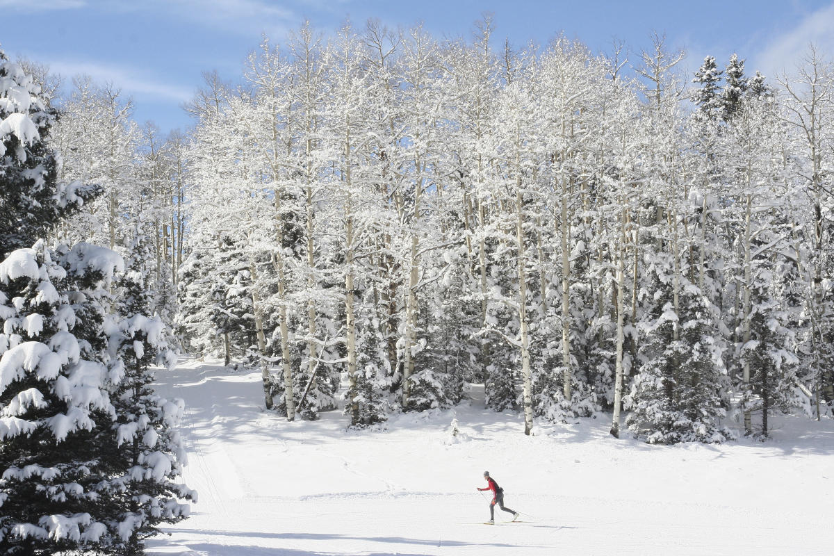 Enchanted Forest Cross Country Ski and Snowshoe Area has 20 miles of groomed cross-country trails, New Mexico Magazine
