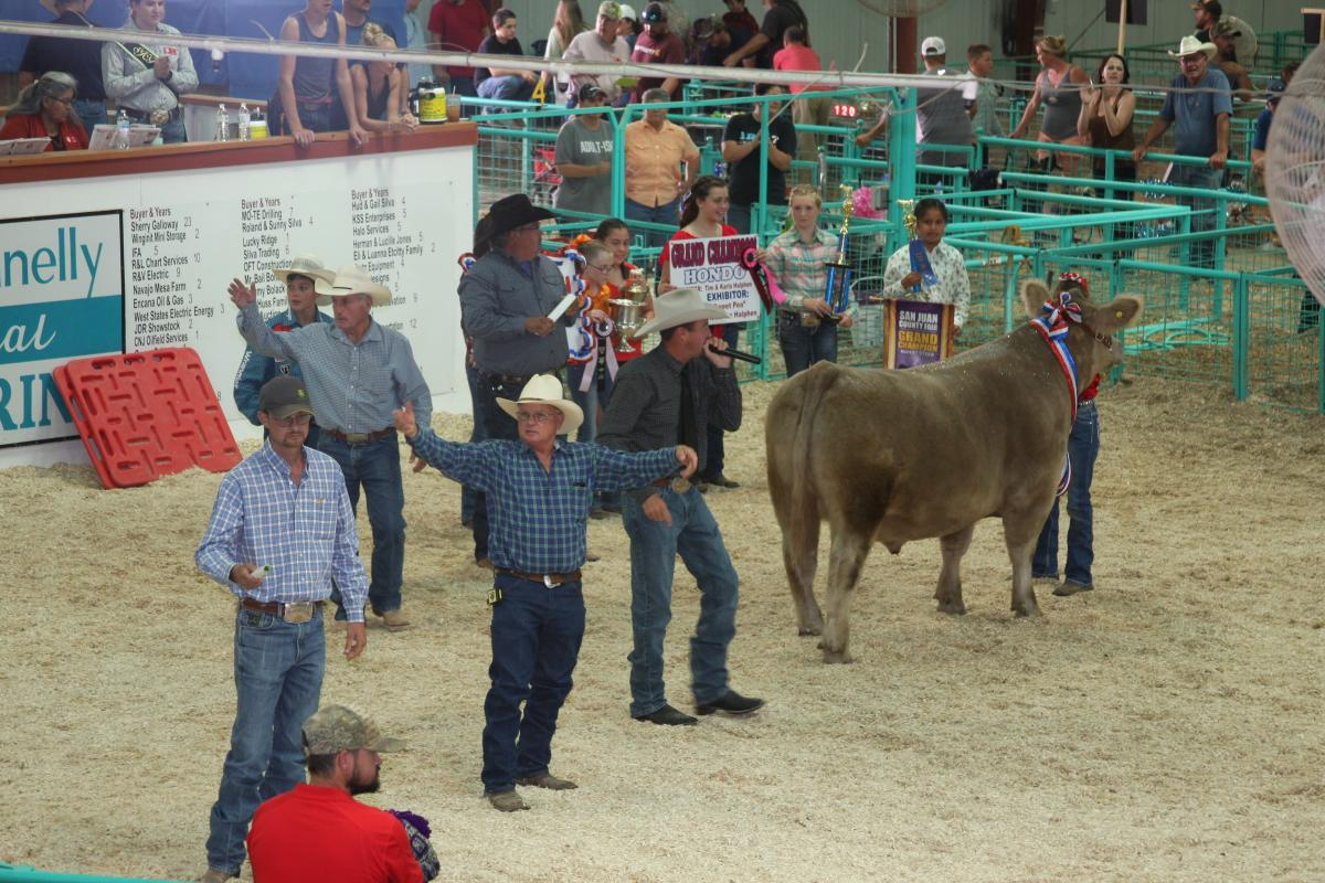 San Juan County Fair