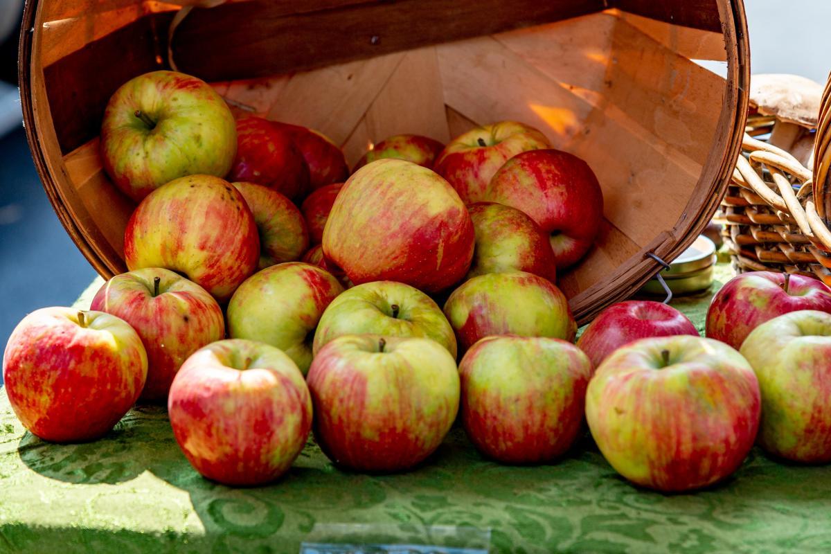 Apples Basket