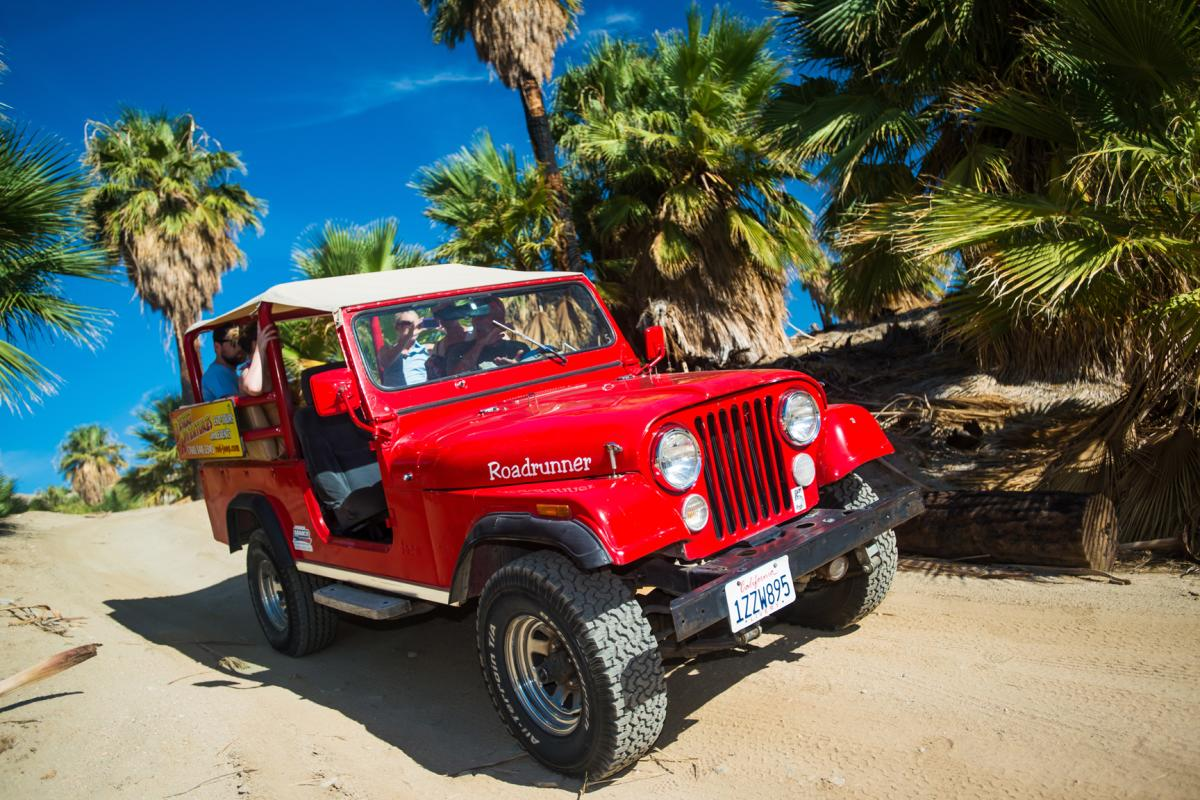 Red jeep in desert surrounded by palm trees