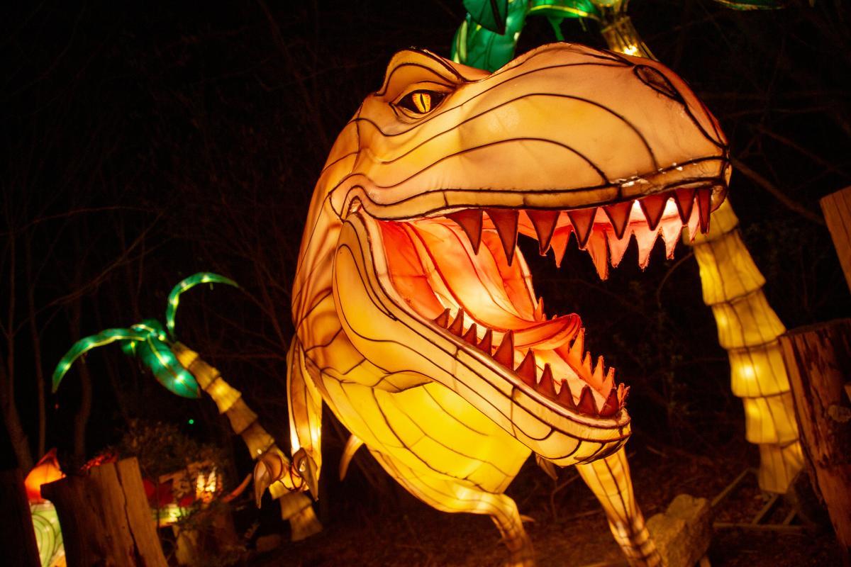 Asian Lanterns dinosaur
