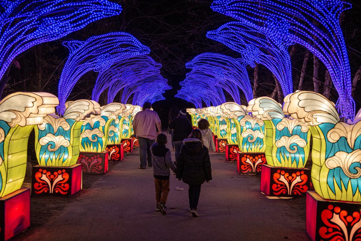 Asian Lanterns illuminated path