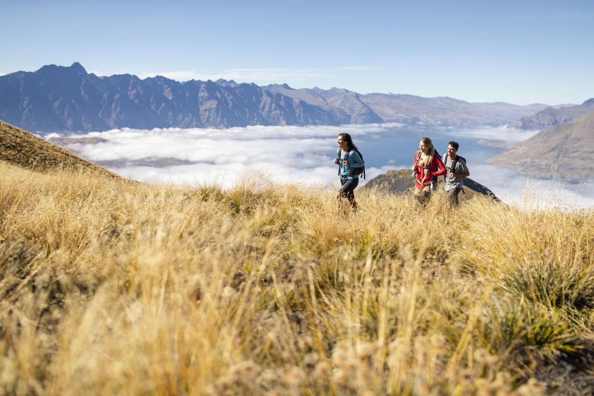 Ben Lomond Summer Hiking with Friends