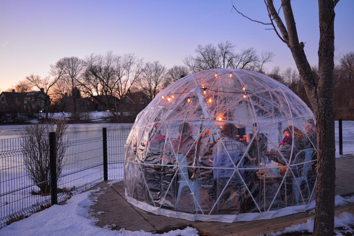 Winter Snowglobe Zoo 2