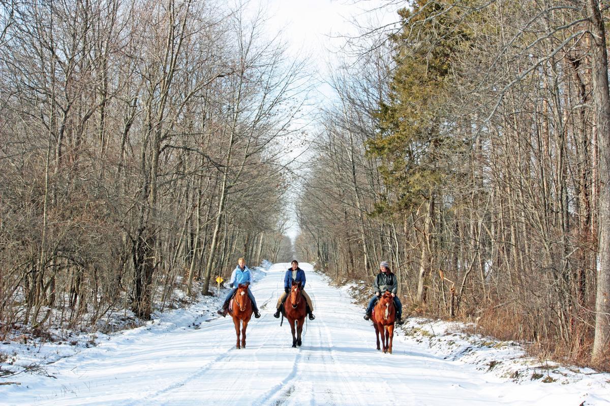 DK Ranch Horseback Riding through FL Forest in Winter
