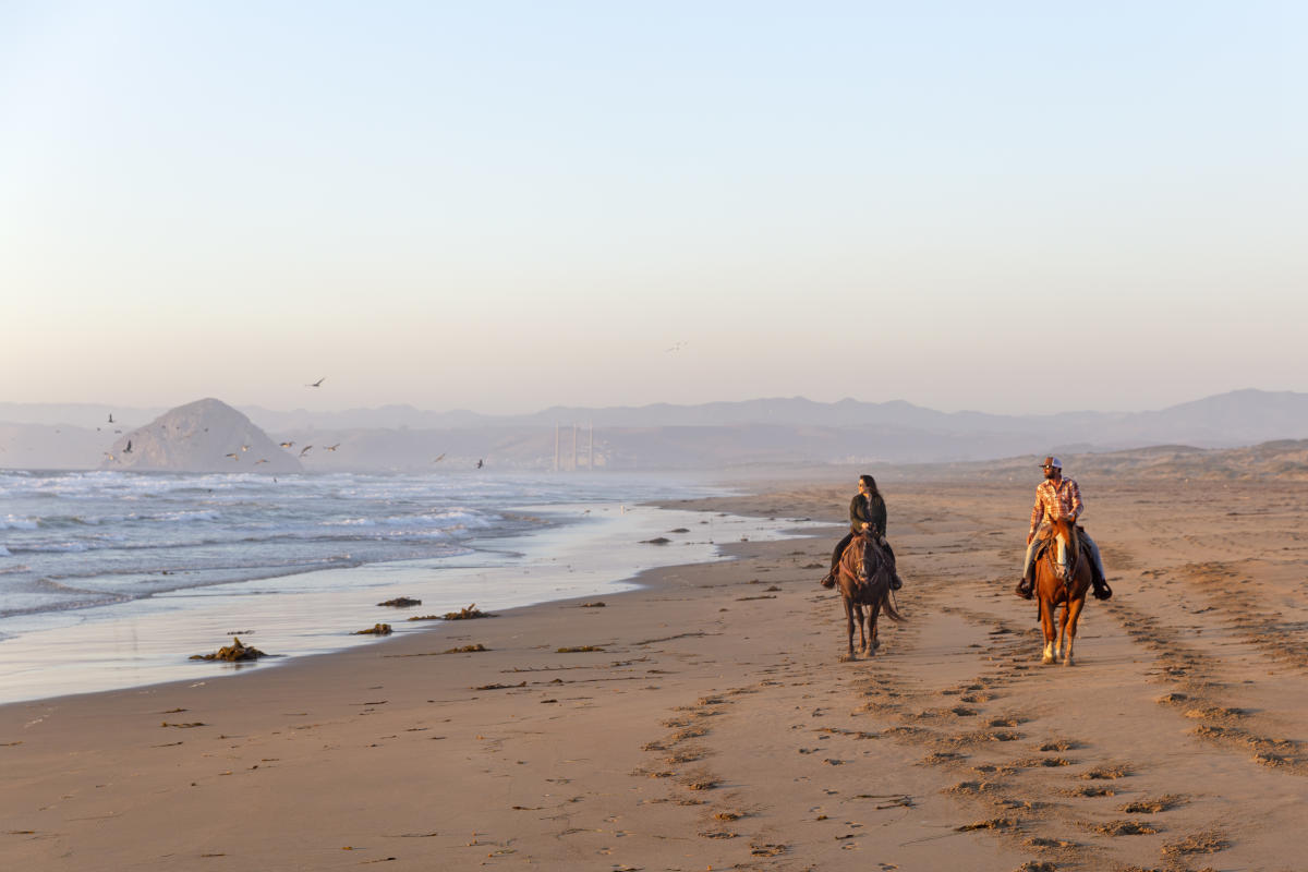 A woman and a man riding horses on the beach near Los Osos in SLO CAL