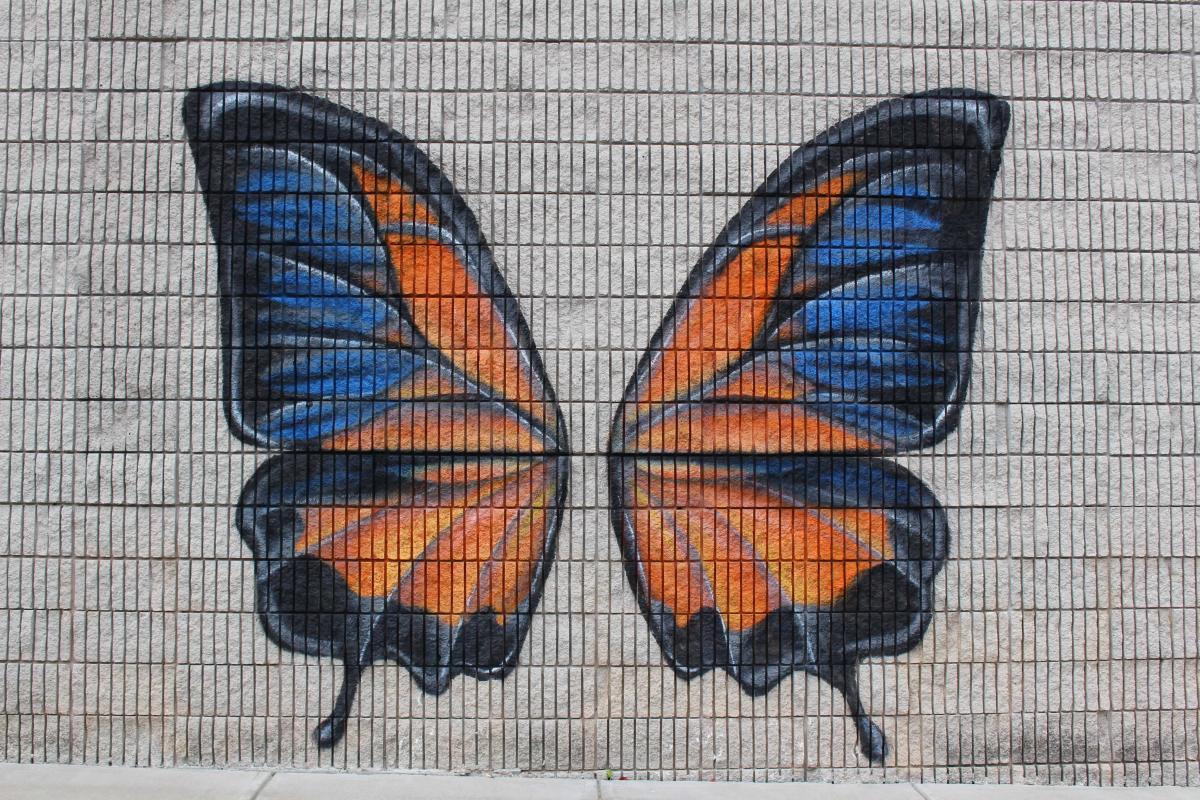 Orange & Blue Butterfly Mural