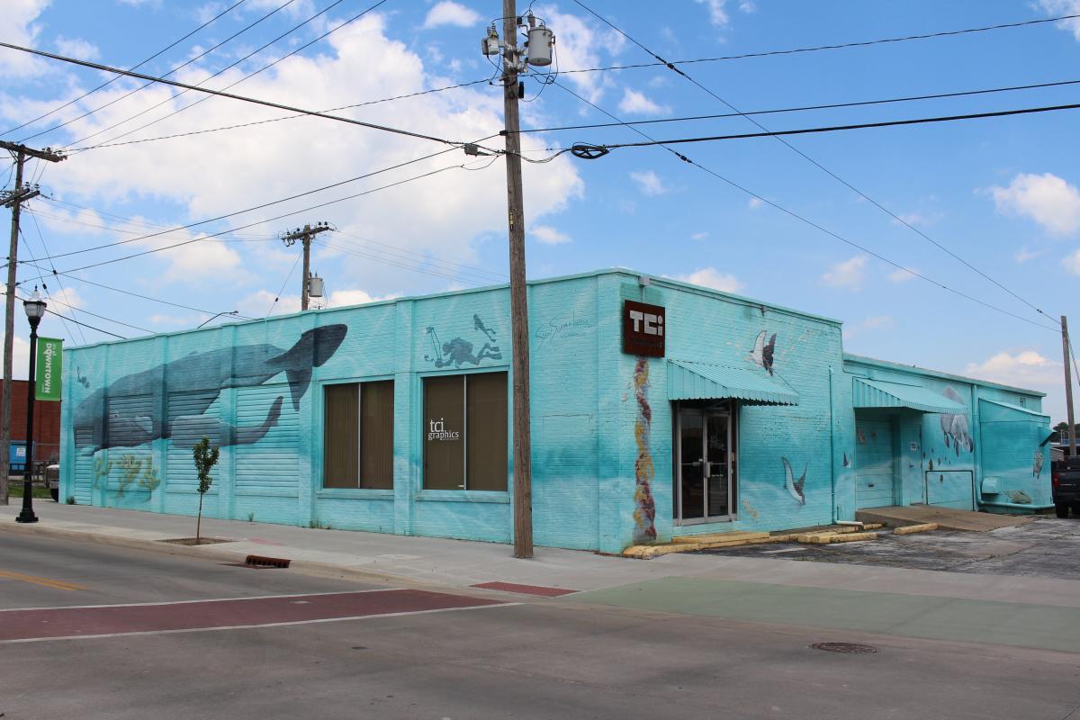 Sea Animals Mural
