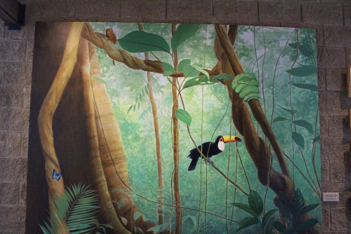 Toucan Mural