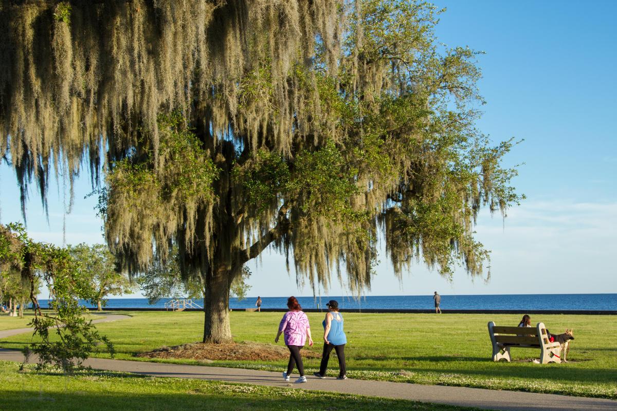 Eric Lindberg - Mandeville Lakefront walking