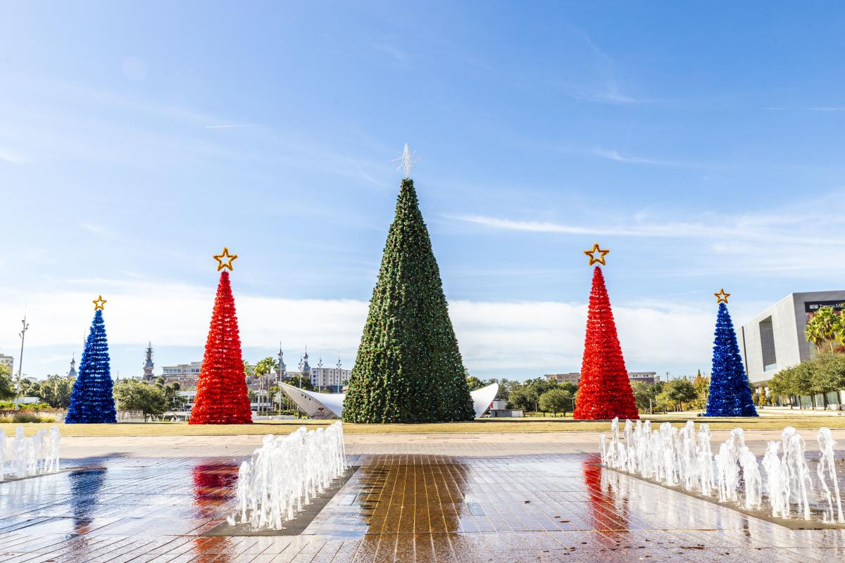 Christmas trees in Curtis Hixon Park