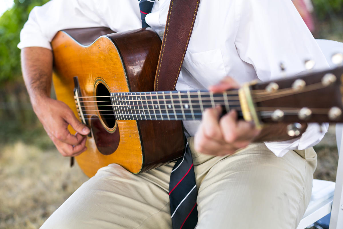 Accoustic guitar in the vineyard