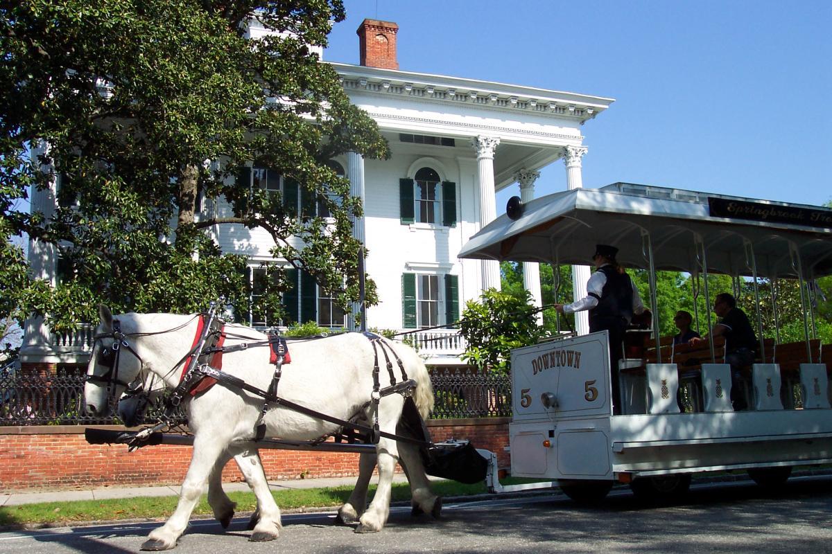 Springbrook Farms Horse Trolley