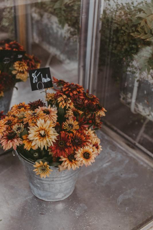 Beautiful-flowers-at-flower-shop