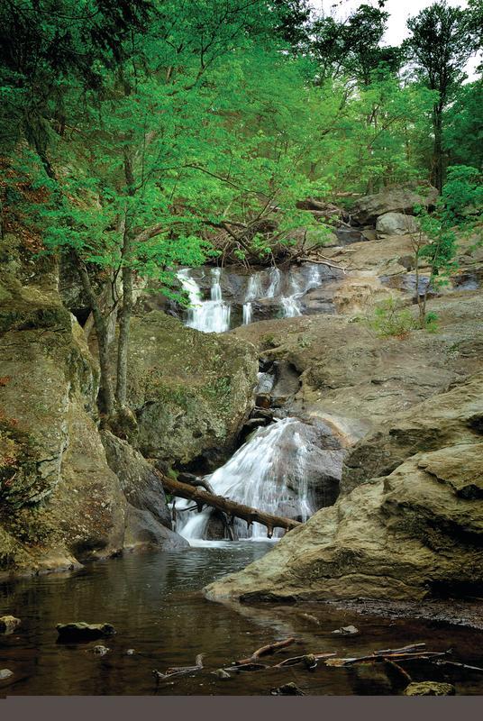 Waterfall and trees at Cummingham Falls