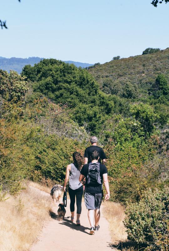 Family with dogs hiking Pulgas Ridge Open Preserve in San Mateo County, CA