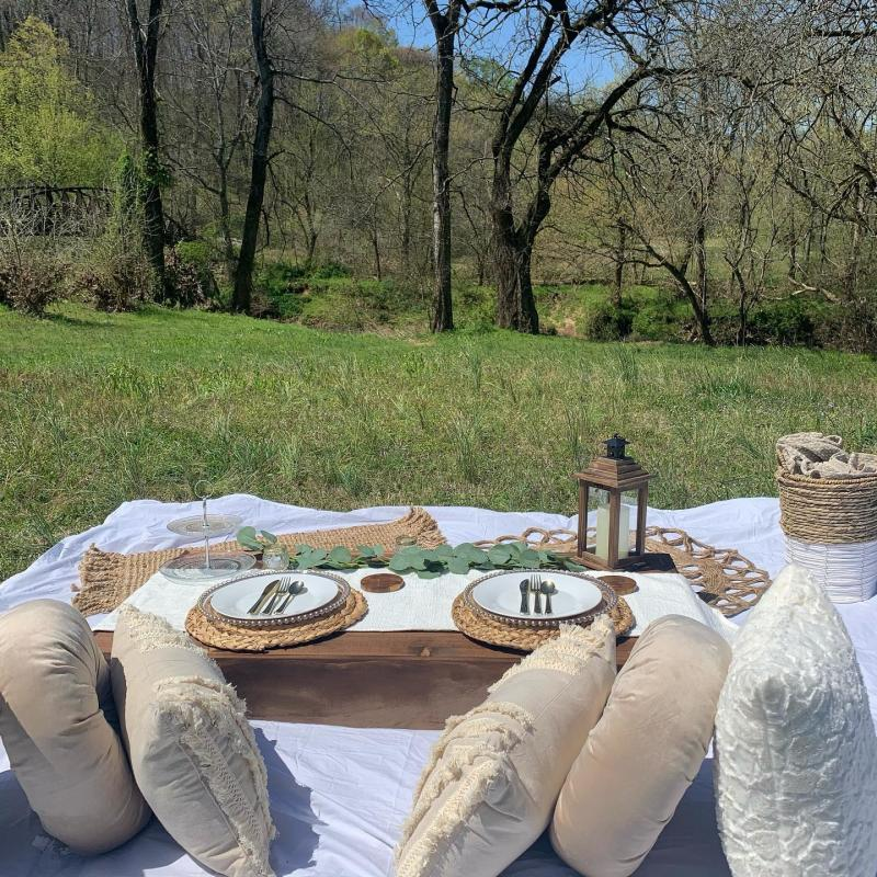 picnic setup in a park overlooking a river