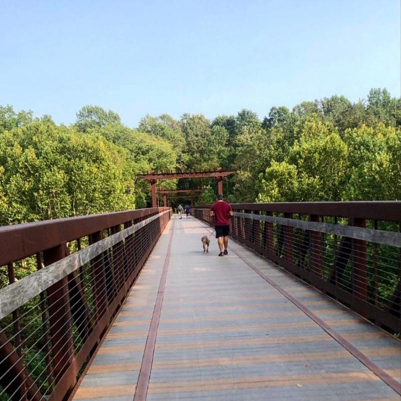 man and dog on a greenway bridge