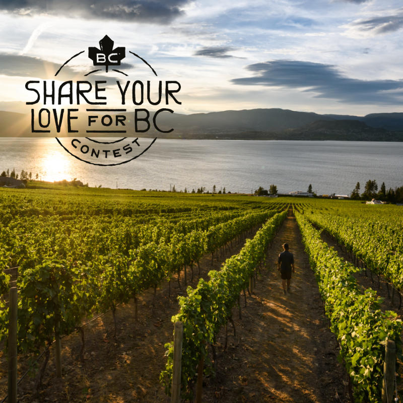 Share Your Love for BC Contest Asset