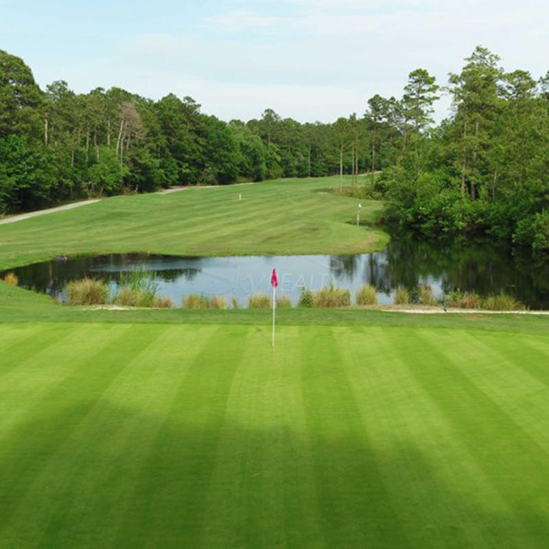 Golf green with water feature at Diamondback Golf Club