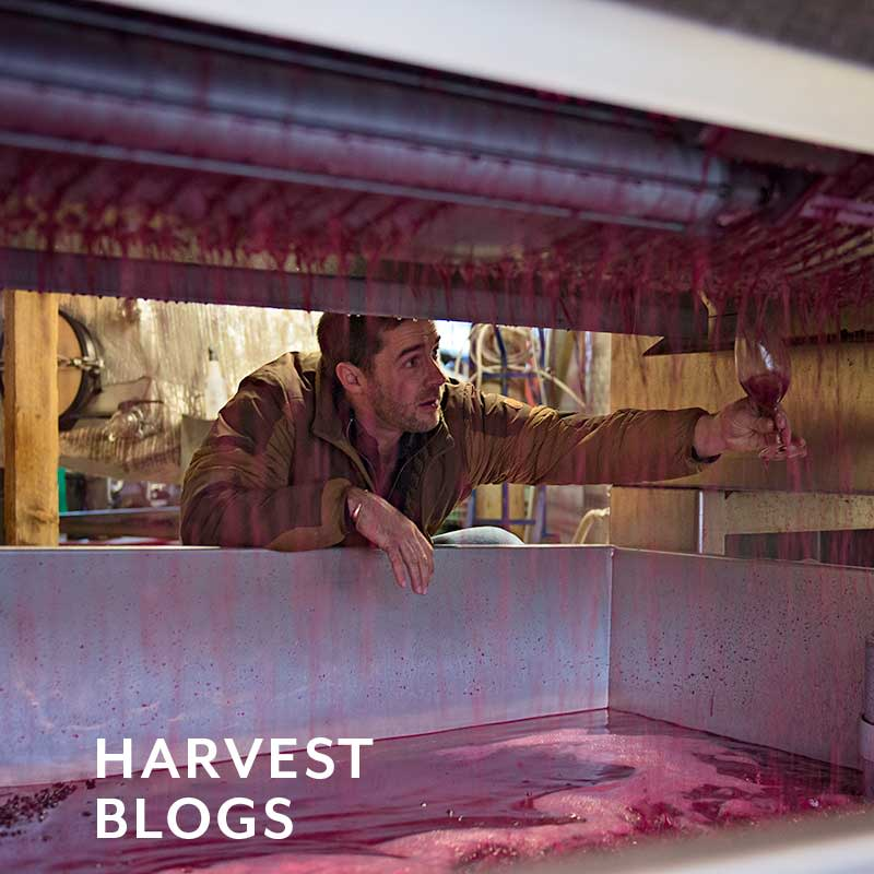Harvest Blogs