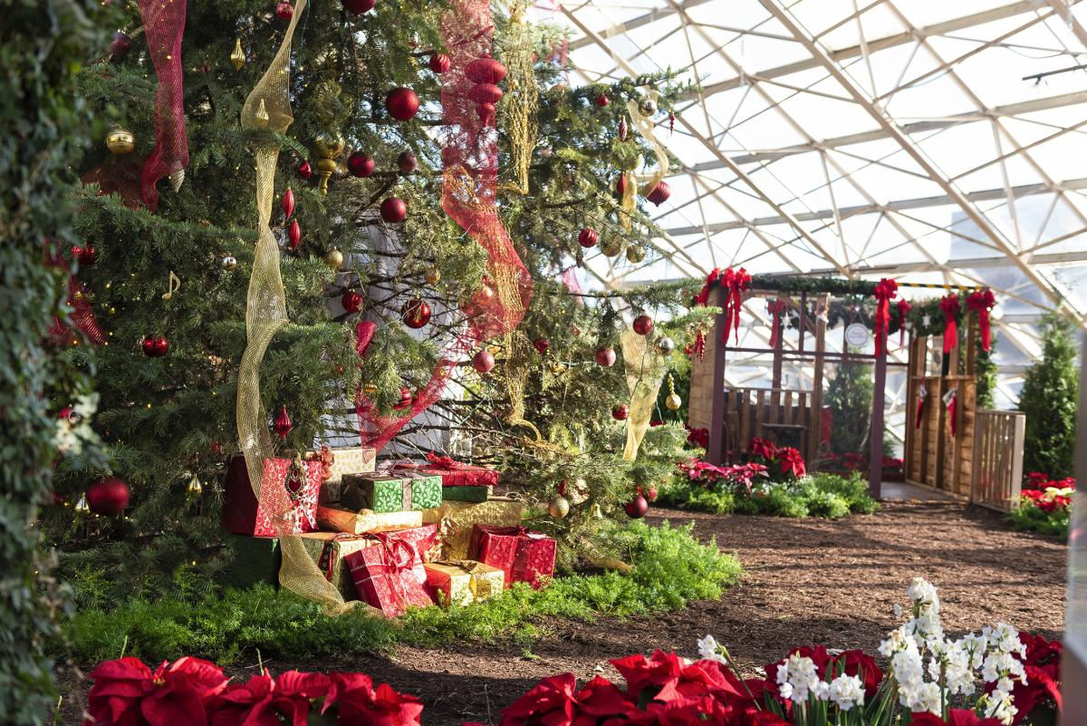 Holiday exhibit at the Botanical Conservatory in downtown Fort Wayne