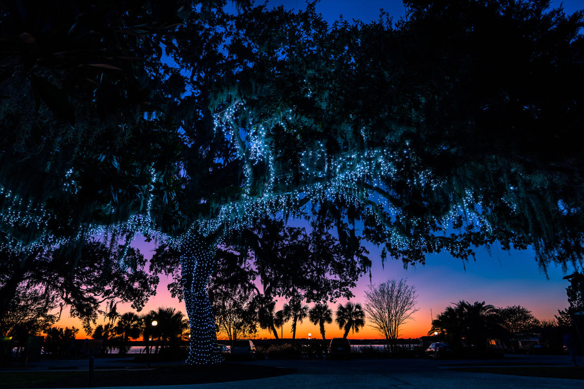 Christmas lights on Jekyll Island are a favorite annual holiday tradition