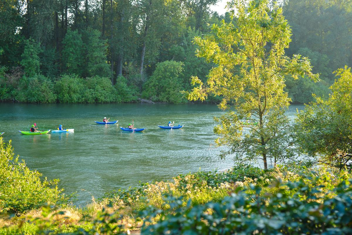 Kayaking the Willamette River