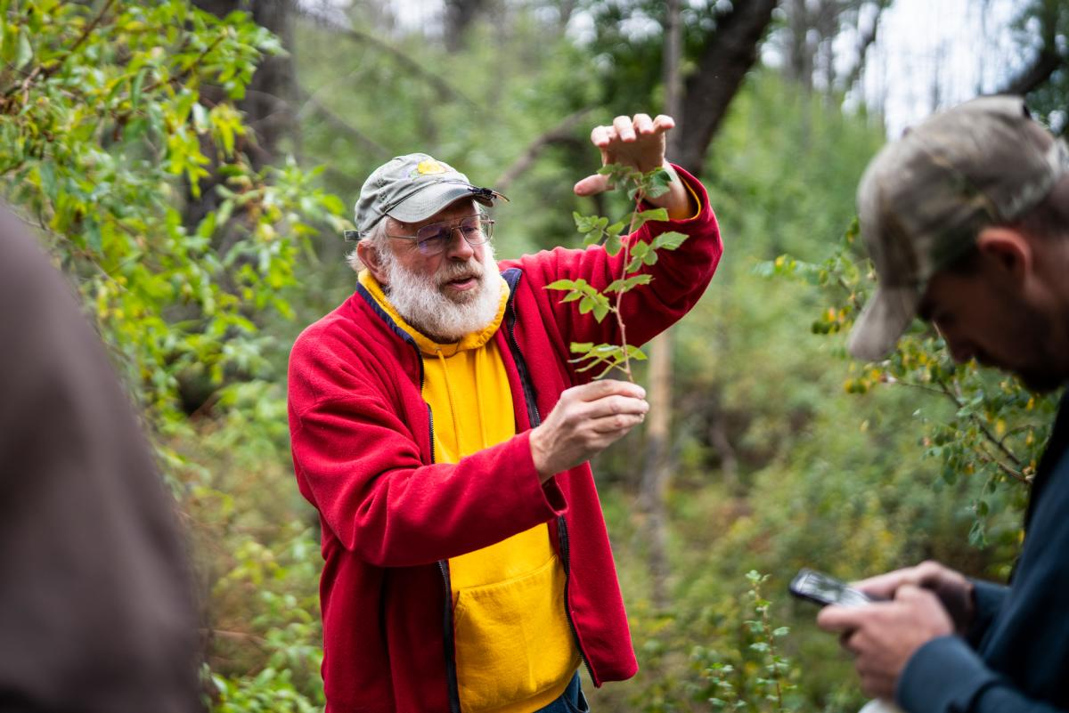 William Norris explains a woody plant species to his dendrology students