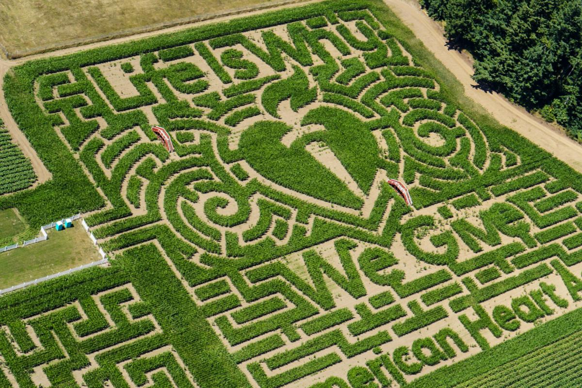 An aerial photo of Rutledge Corn Maze with the American Heart Association logo design and Life is Why We Give quotation