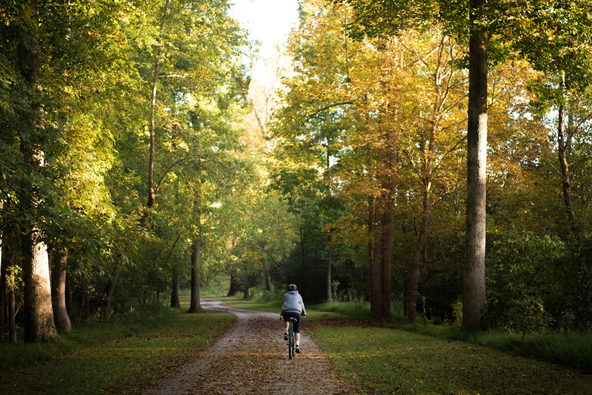 Bike rider on open greenway with fall colors