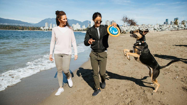 Off-leash dog parks