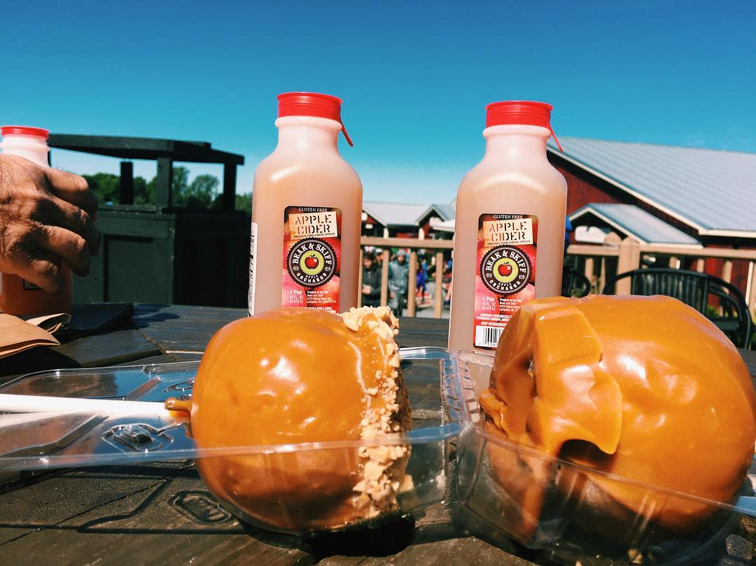 two candy apples infront of two apple cider jugs on a table outdoors