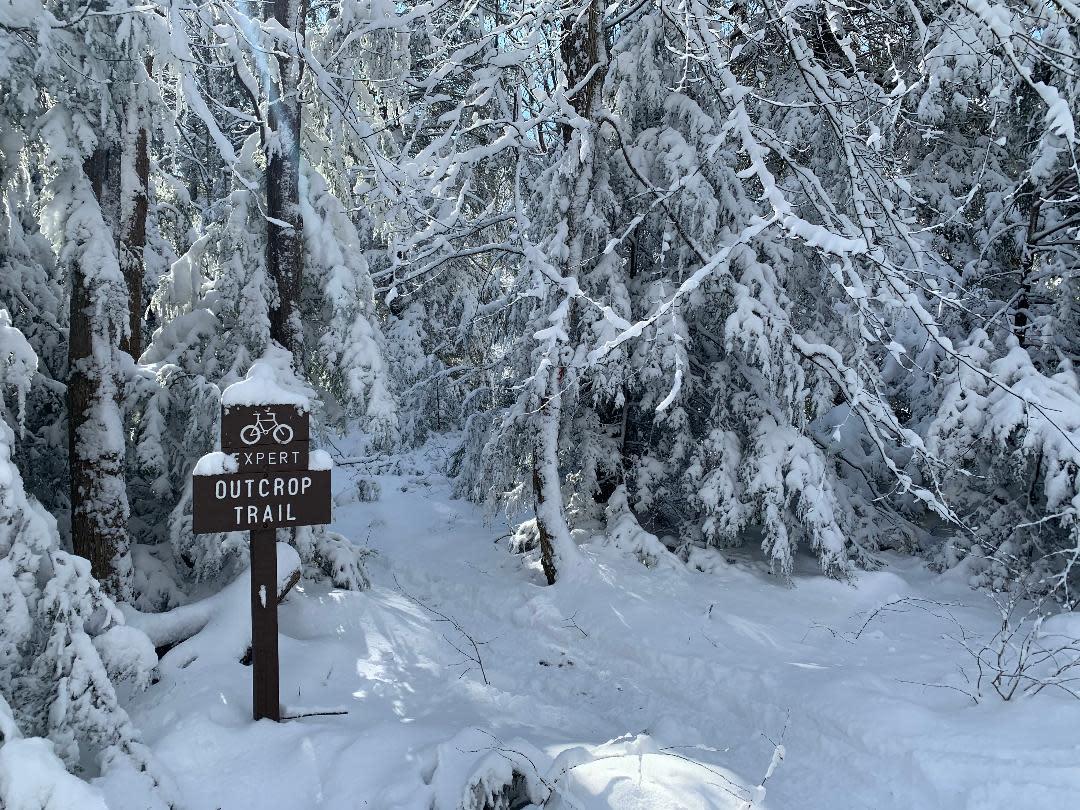 Laurel Summit Outcrop Trail