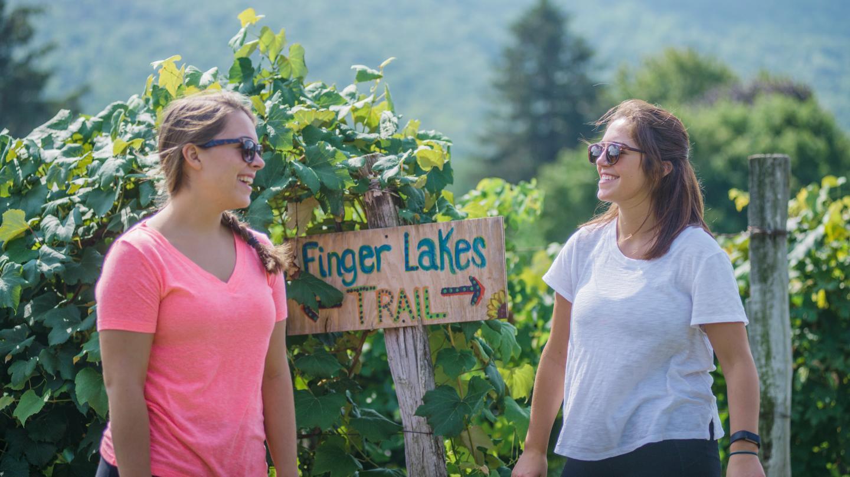 Mitchellsville Gorge Trail Head