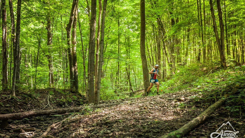 Twisted Branch Trail Run