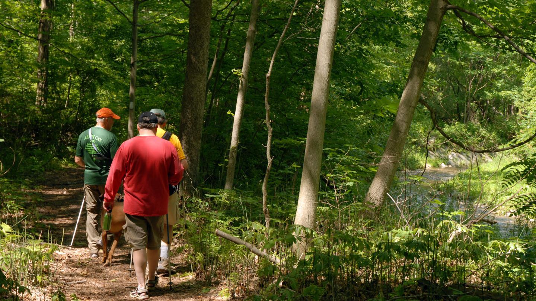 Finger Lakes Trail Hike 196