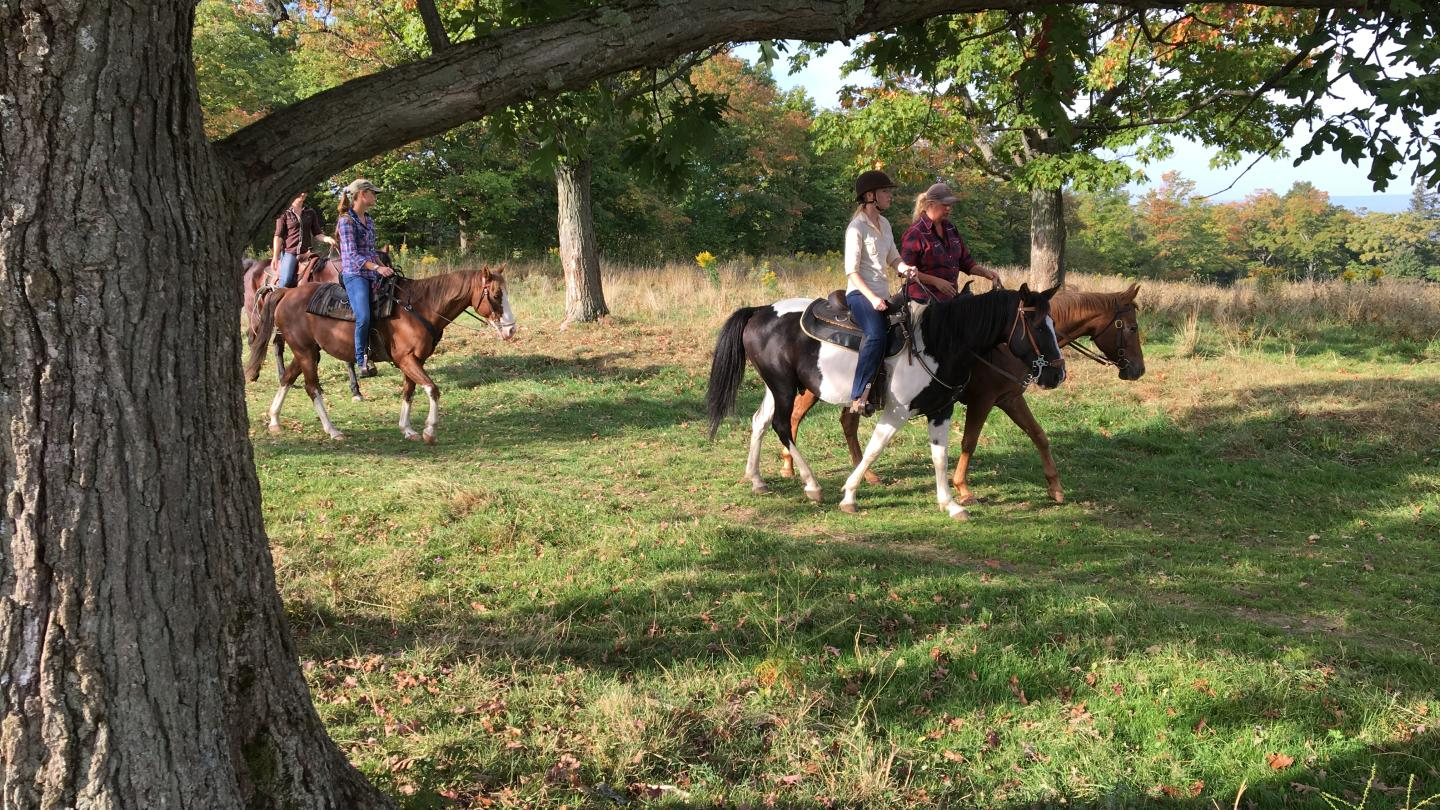 Horseback Riding in Finger Lakes National Forest