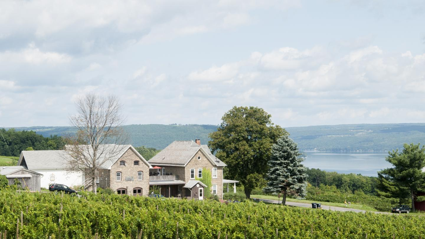 Chateau Frank 1886 Historic Building, vineyard and Keuka Lake