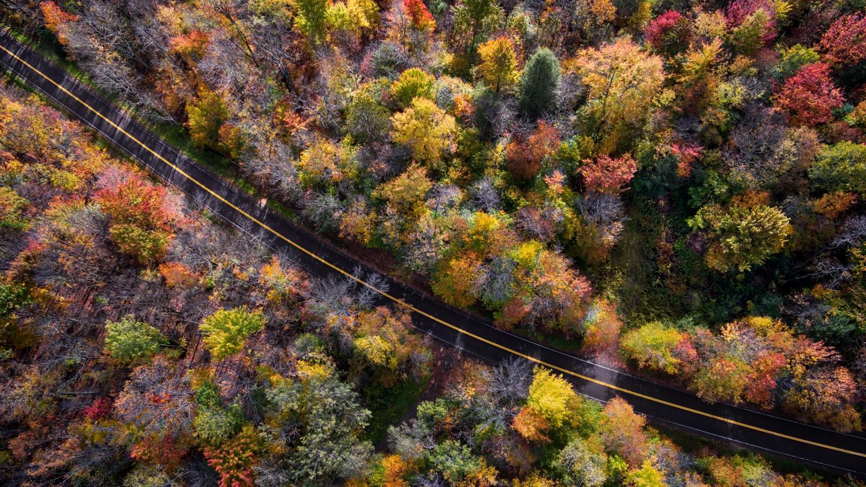 Hornby Aerial Fall