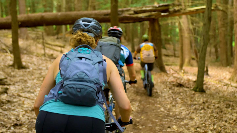 Mossy Bank Park Mountain Bike Trail Cyclists Riding Mountain Bikes