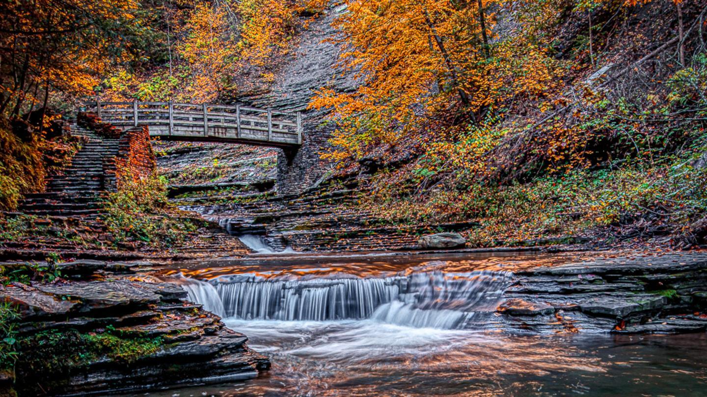 Stony Brook State Park Fall