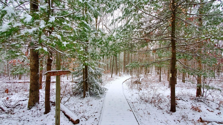 Winter Hike at Spencer Crest Nature Center