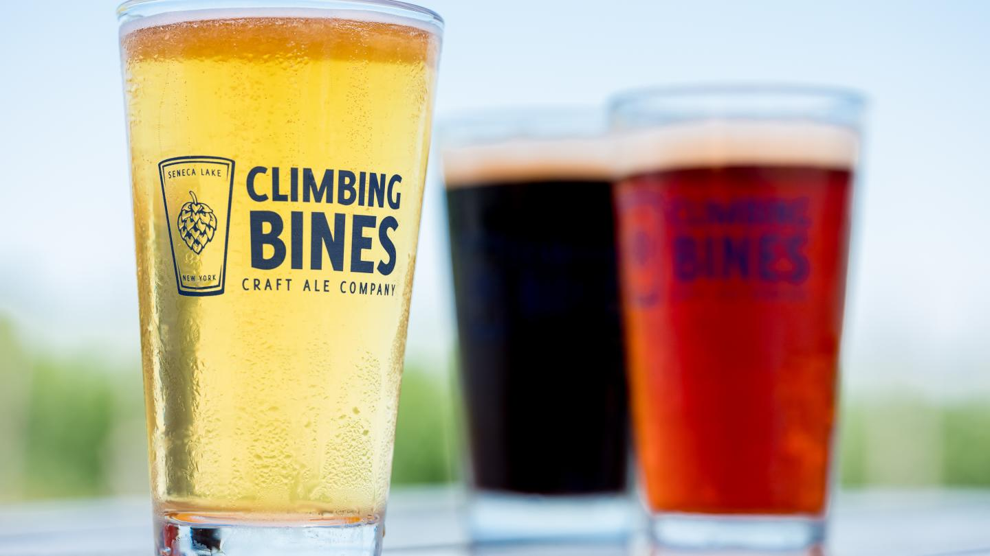 Outdoor Tasting at Climbing Bines Hop Farm and Craft Ale Company