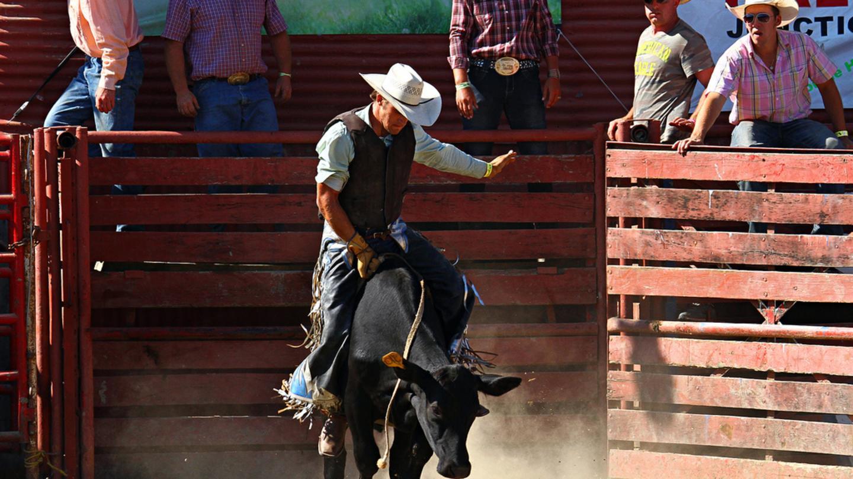 Steuben County Fair Rodeo