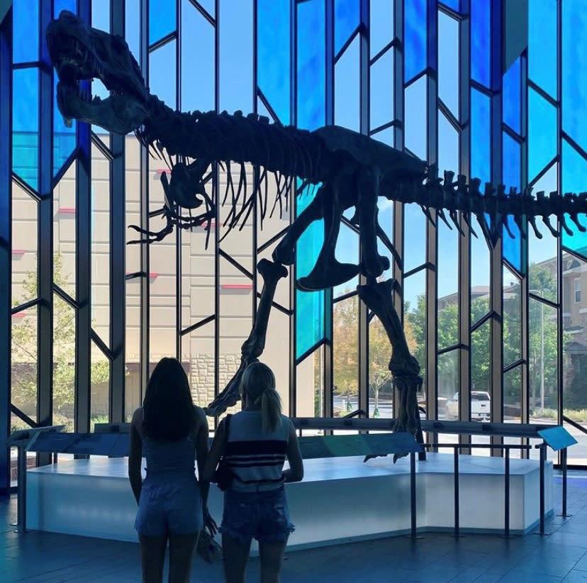 Dinosaur skeleton in Museum at Prairiefire