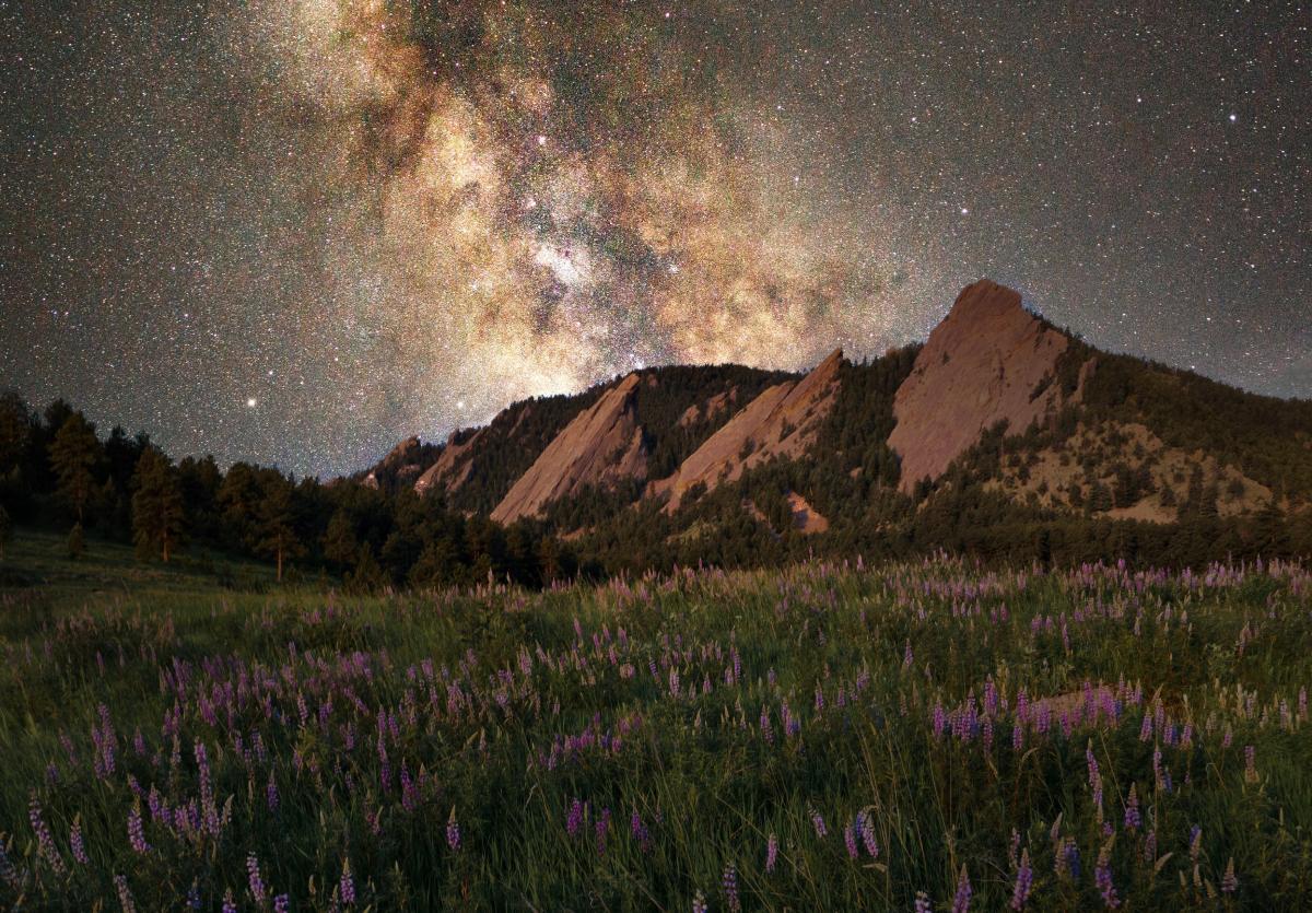 Stargazing by Vincent Ledvina