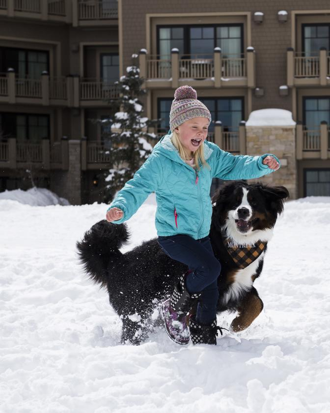 Girl playing the snow with Montage dog ambassador